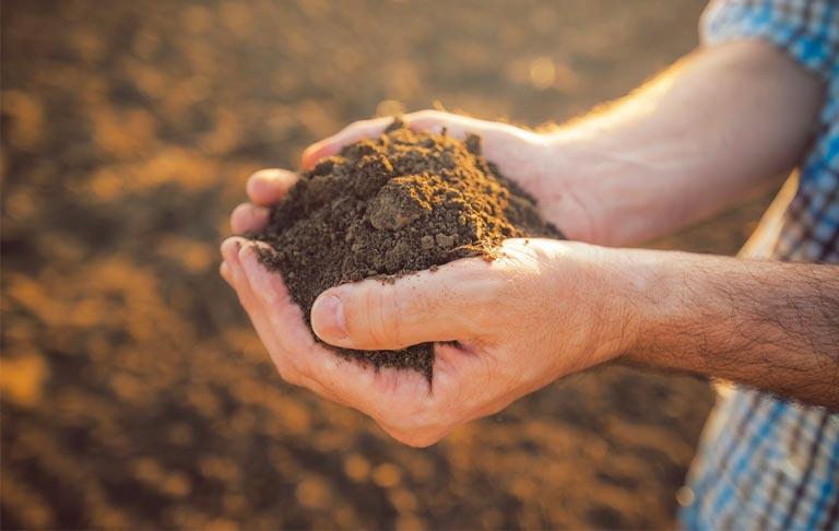 etude des sols