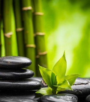 fengshui bambou